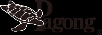 Pagong