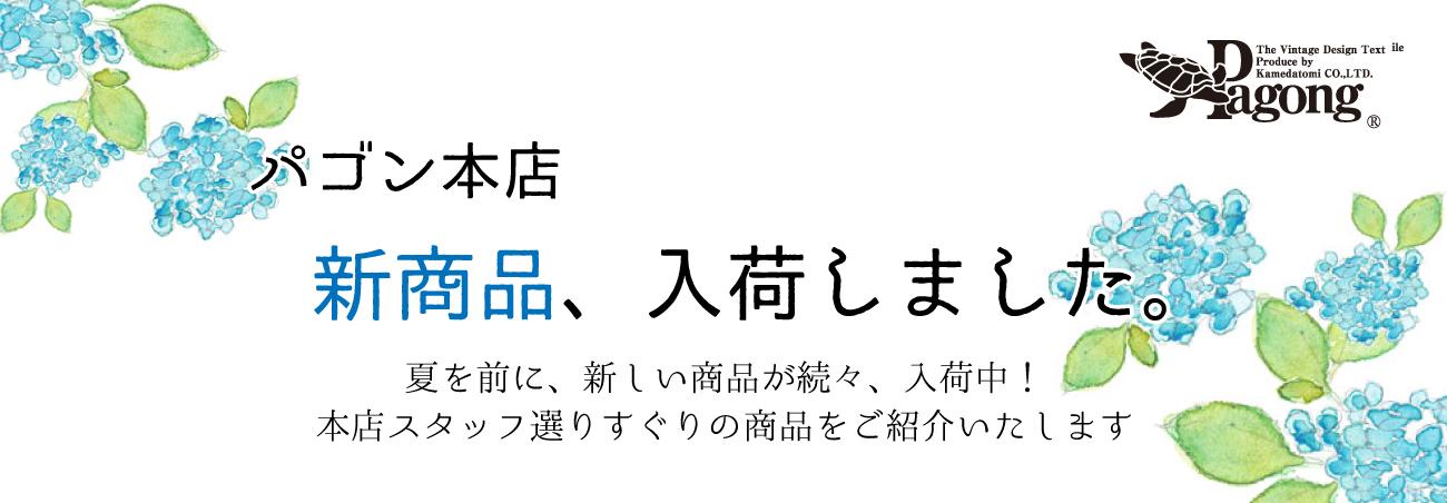 本店6月新作タイトル